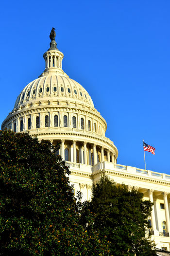 American Flag US Capital US Capitol Building Washington D.C. Washington DC Architecture Building Exterior Built Structure Clear Sky Dome Dome Architecture Sky Flag Low Angle View Patriotism Tree