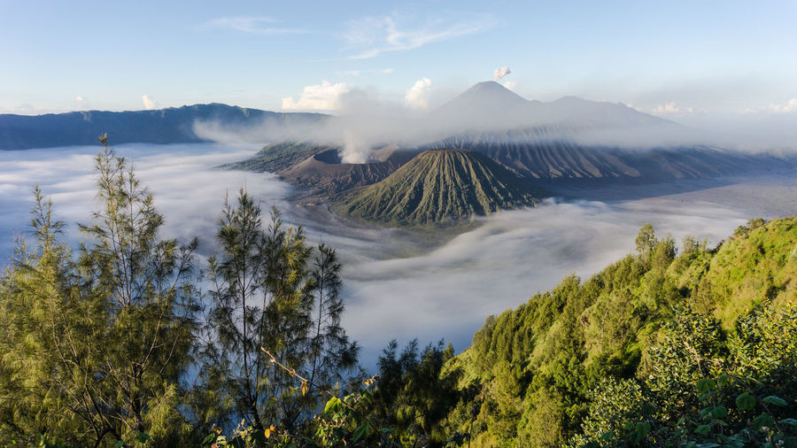 whispered sands of Bromo, covered with myst in early moring Beauty In Nature Cloud - Sky Day High Angle View Idyllic Landscape Mountain Mountain Range Nature No People Non-urban Scene Outdoors Physical Geography Scenics Sky Tranquil Scene Tranquility Travel Destinations Tree Volcanic Crater Volcanic Landscape Volcano