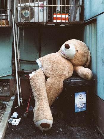Retirement Rubbish Abandoned Architecture Art And Craft Built Structure Creativity Day Human Representation Indoors  Mammal No People Puppet Representation Rubbish Bin Softness Still Life Stuffed Toy Teddy Bear Toy Toy Animal