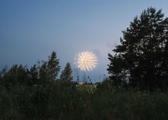 Kaboom! Fireworks Linas Was Here Nature Panorama Trees Countryside Dark Blue Sky Evening Landscape Meadow Village Wild Woods