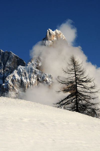 Dolomites Alps, South Tyrol, Italy. Beautiful view of Cimon della Pala or Cimone with blue cloudy sky in the Pale di San Martino Group. Italy Dolomites, Italy Dolomiti Italy Ice Italia Passo Rolle San Martino Snow ❄ Tree Alpine Landscape Alps Beauty In Nature Castrozza Cimon Cimon Della Pala Cold Day Fassade Fiemme Forest Group Hicking Mountains Nature Outdoors Scenics Sky
