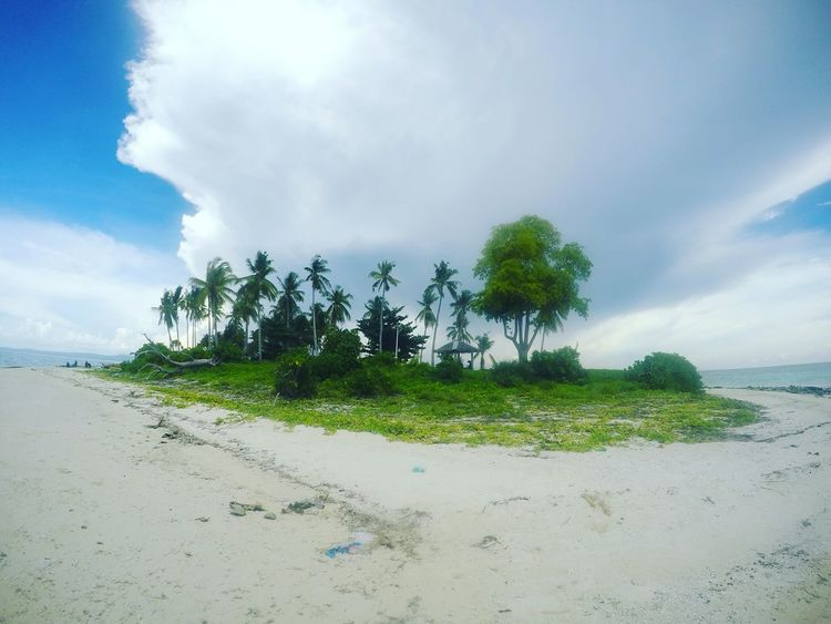 New Talent First Eyeem Photo Kalanggaman Island Palompon Leyte Philippines Travel Travel Photography Island Island Hopping Island Life No People Tree Cloud - Sky Sky Blue Nature Beach Palm Tree Landscape Outdoors Water Day Sand Sand & Sea Eyeem Philippines EyeEmNewHere Miles Away