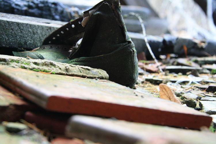 Alte Maschinen Brand Büro Dachziegel Emaileschüssel Fenster Lost Place Schuh Mit Moos Schuhe  Schüssel Im Wald Stuhl Toilet Toilette Treppenhaus Unterlagen Unterlagen Auf Fensterbrett Verbrannter Dachstuhl Waschbecken