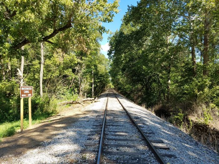 Transportation Railroad Track Diminishing Perspective No People Whitewater Railroad Big Four Railroad Whitewater Canal Laurel Indiana The Way Forward