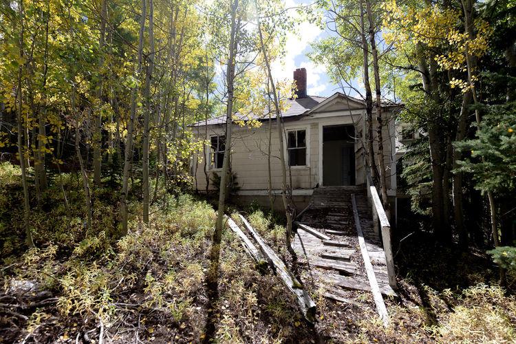 Autumn Mining Town House Fall Fall Leaves Gilman Colorado Gilman Ghost Town Aspens Aspen Trees
