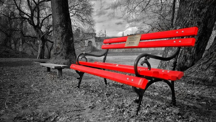 Bench Selective