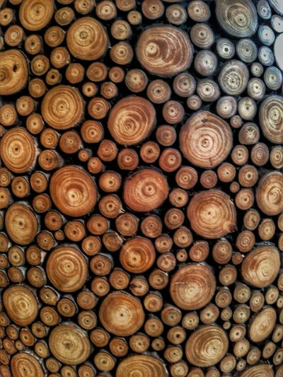 You spin me round round... Beautifully Organized Circles Wood Chump Expo2015milano Worldwide Details Abstract Italy Showcase April Art Is Everywhere