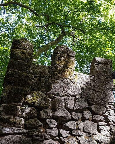 Nature Château Château Des Maures Sentier Sintra Portugal Moorish Castle Road Path