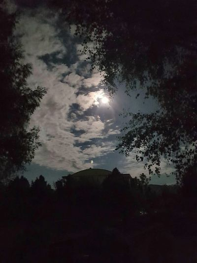 Cloud - Sky Night Nature Astronomy Tree Milky Way Star - Space Scenics Outdoors Silhouette Moon Landscape No People Beauty In Nature Constellation Space Be. Ready.