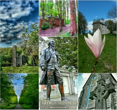 My Country In A Photo Taking Photos Stone Nature Old Ruins Celbridge Photos Around You Castles Ancient Ruins Ireland🍀
