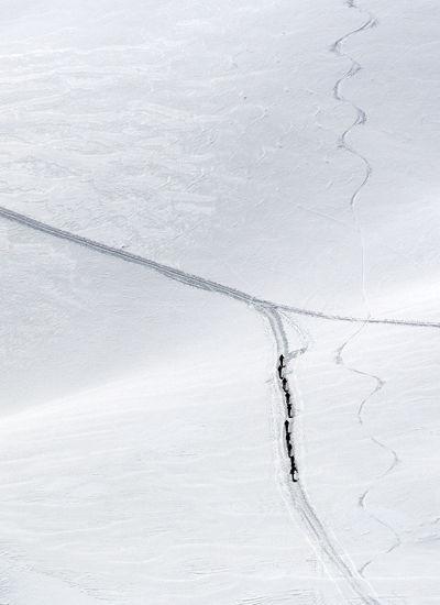 skiers walking