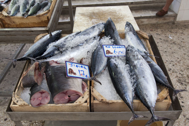 Close-up of fish for sale