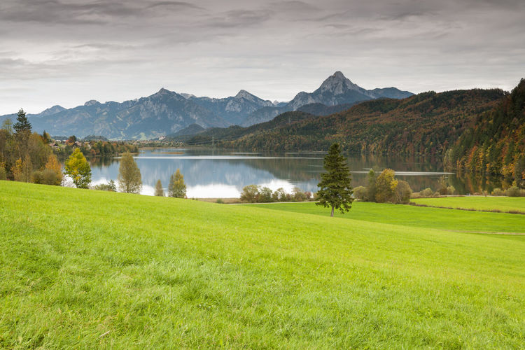 Landscape view with green meadow in the foreground, the Weissensee in the middle area and the first alpine peaks with the Säuling as the highest elevation in the background in the evening light mood. Bavaria Dawn Light Me Beauty In Nature Cloud - Sky Day Grass Green Color Lake Lake Weissensee Landscape Mountain Mountain Range Nature No People Non-urban Scene Outdoors Plant Scenics - Nature Sky Tranquil Scene Tranquility Tree Water