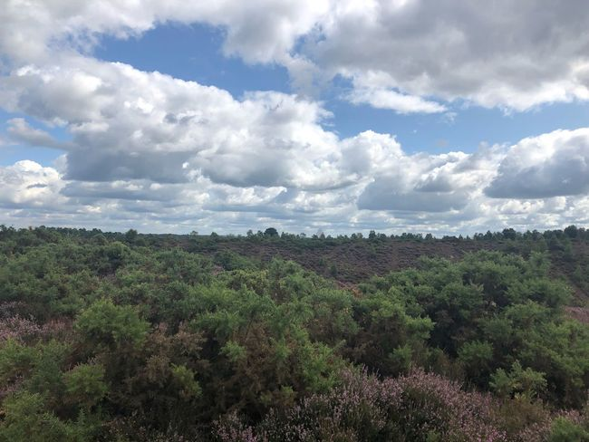 Hiking, 🇬🇧 Nofilter Devils Punch Bowl Hiking Cloud - Sky Plant Sky Beauty In Nature Growth Tranquility Tree Scenics - Nature Landscape Nature Outdoors