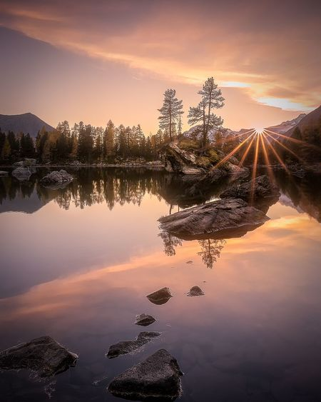 Engadin lake sunset - sunstar Dream Colors Autumn Steps Frieden Yoga Sunstar Landscape Lake View EyeEm Selects Sky Water Reflection Beauty In Nature Sunset Lake Tree Cloud - Sky Orange Color Idyllic Silhouette Reflection Lake Tranquility Scenics - Nature Nature Tranquil Scene Plant Outdoors