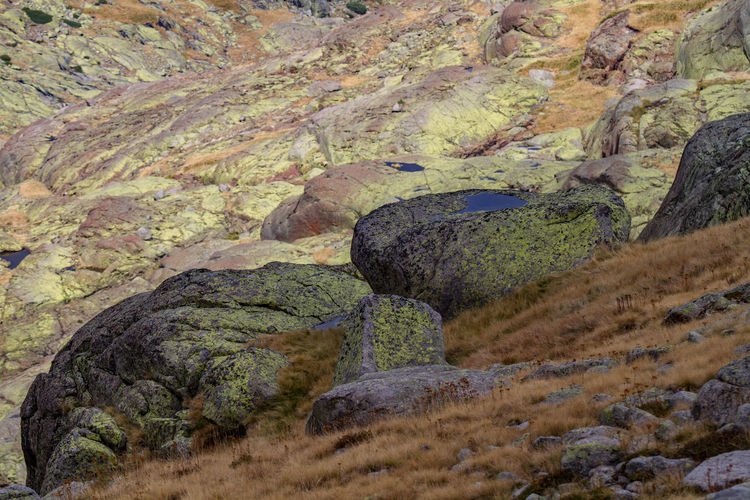 Rocks at Sierra de Gredos Green Beauty In Nature Day Landscape Moss Mountain Nature No People Outdoors Rock - Object Scenics Tranquil Scene Tranquility Water Yellow