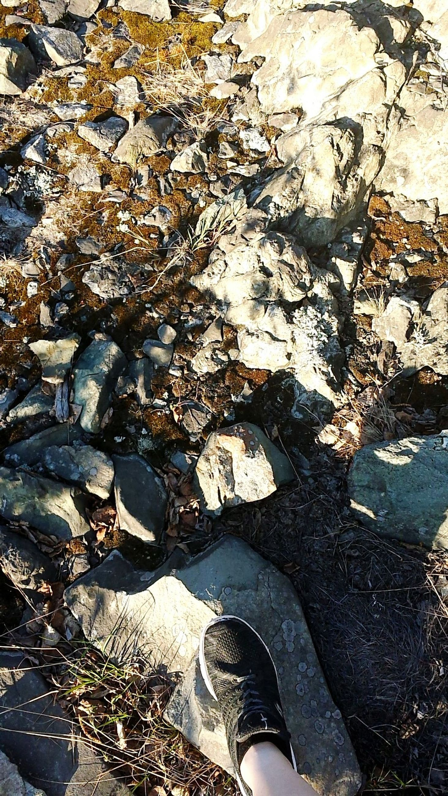 low section, high angle view, human leg, day, shoe, rock, nature, land, real people, solid, body part, human body part, one person, standing, water, rock - object, sunlight, unrecognizable person, personal perspective, outdoors, change, leaves, shallow