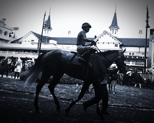 Horses at Churchill Downs with Iphone6