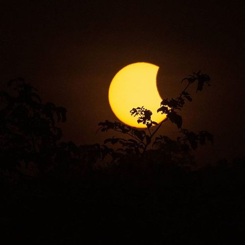 Eclipse Solareclipsethailand2016 Lumixgx8 Lumixnz Eclipse Astronomy Thailand Solareclipse2016 Thetrippacker Lumixnz Lumixfriend Love_natura Bestoftheday Thailand Thaitraveling Walkwithuniverse Thailand_allshots