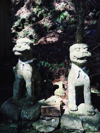 Gurdian Dogs Shinshiro Hourai Temple Temple Japan