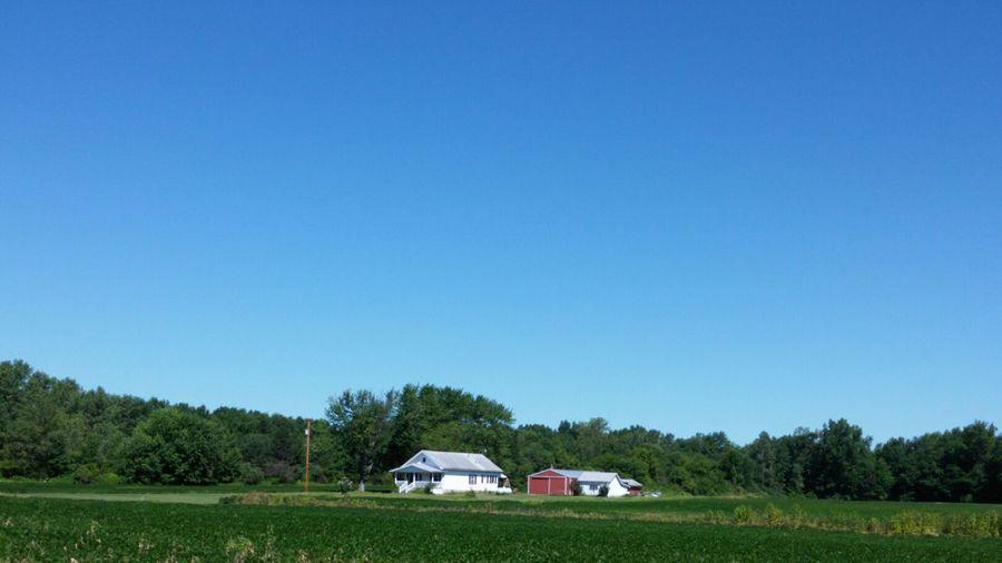 Houses On Green Farm Field Against Clear Blue Sky