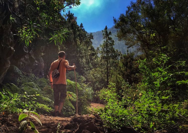 Senderos Senderismo Enjoying Life Tenerife IPhoneography Iphone6 That's Me Hanging Out Summer Memories... Nature_collection Landscape_Collection