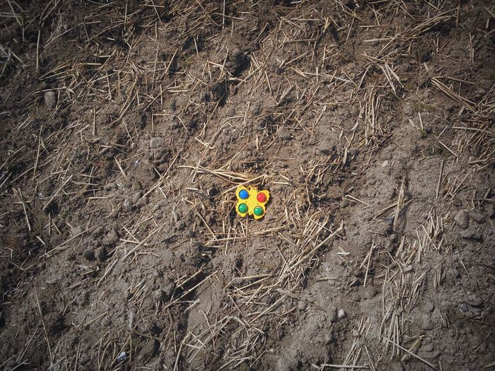 A lost children's toy on a dirt patch Toy No People Outdoors Nature Berlin Dirt Dirty Lost Broken Lostplaces Lost Places Field Farmland Agriculture