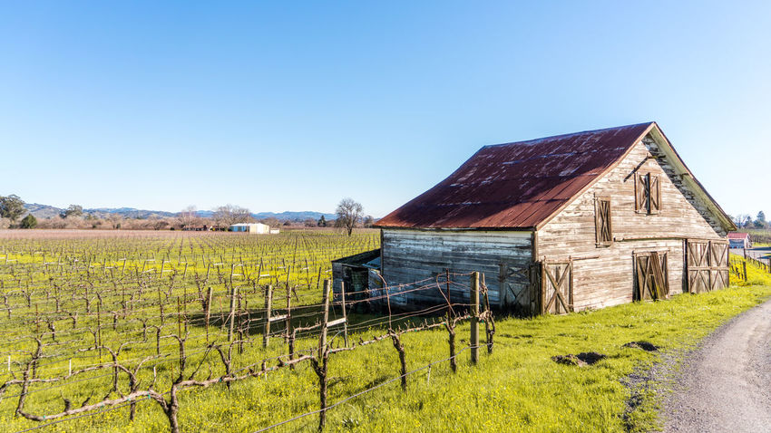 Agriculture Architecture Barn Barn Building Exterior Built Structure Clear Sky Day Farm Field Grass House Landscape Nature No People Outdoors Rural Scene Sky Tranquility