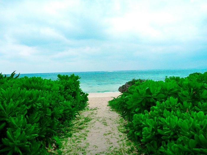 Ishigaki Island Holiday Traveling Okinawa Enjoying Life Life Is A Beach Beach Life Is Beautiful