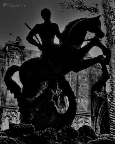 SPAIN Sant Jordi Catedral Claustro
