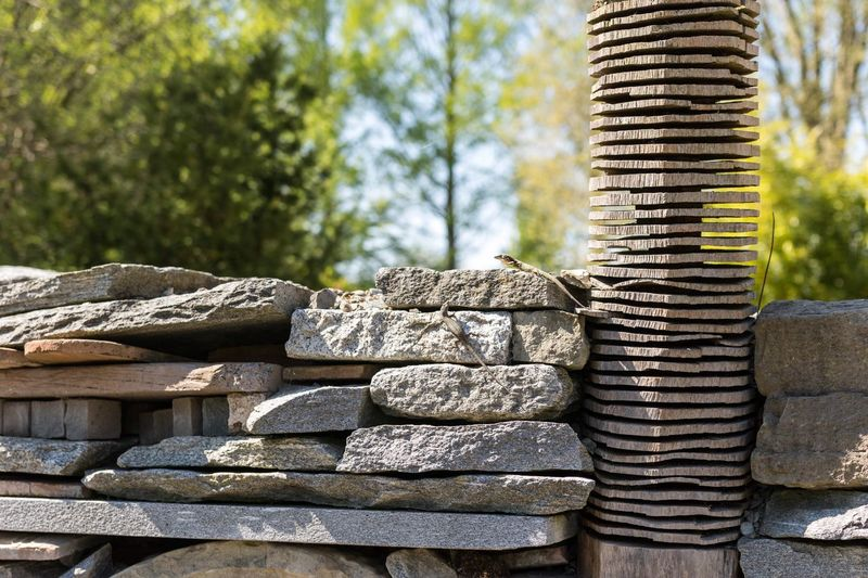 Stack Large Group Of Objects Focus On Foreground Lizard Close-up Selective Focus Abundance Day Brown Heap Group Of Objects Man Made Object Outdoors Stone Material No People Stacked
