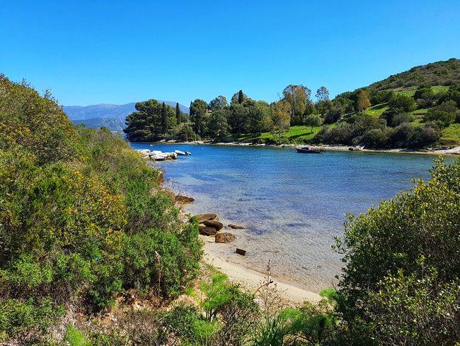 Beach Corsica Island Nature Sun Sea Tree Water Blue Clear Sky Lake Sky Green Color