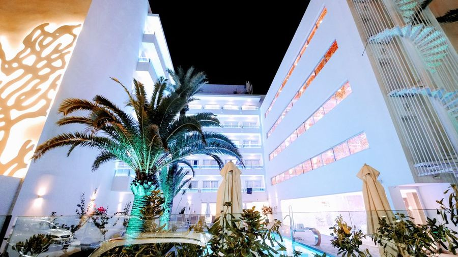 Hotel Hotel Lights Streetphotography Leisurely Holiday EyeEm Best Shots Street Photography Street Light Streetphoto_color Tree City Palm Tree Sky Architecture Building Exterior Built Structure