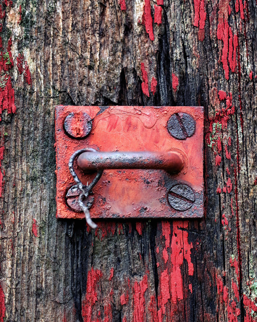 door, metal, wood - material, weathered, outdoors, close-up, day, red, no people, textured, rusty, latch