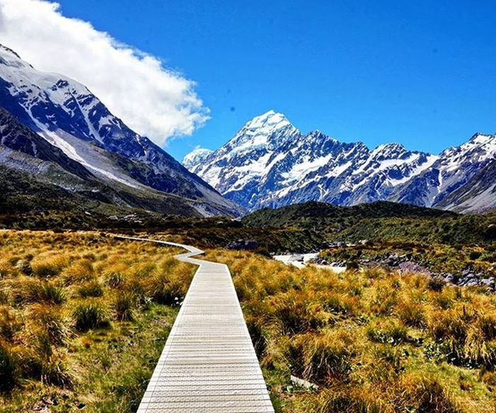 Hiking at its best// Aoraki / Mt.Cook // Highest Mountain of New Zealand Aoraki MtCook Nationalpark Southernalps Southisland Newzealand NZ Hiking Tramping Track Travel Purenz NaturalBeauty Wilderness Nzmustdo Neuseelandern Landscapes With WhiteWall