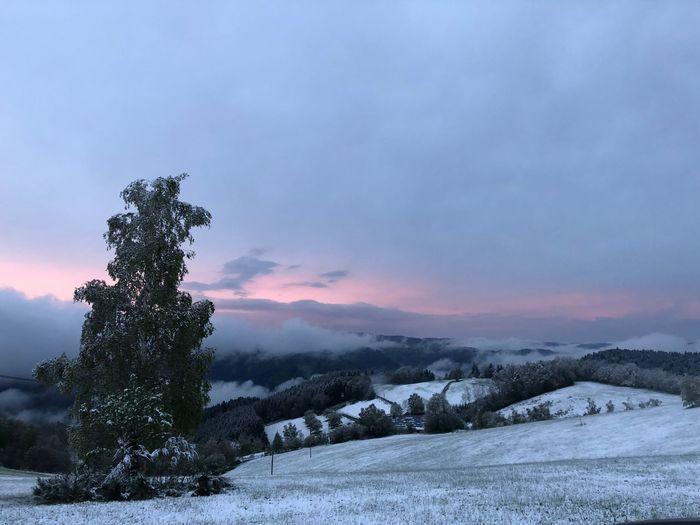 Schwazwaldpoesi