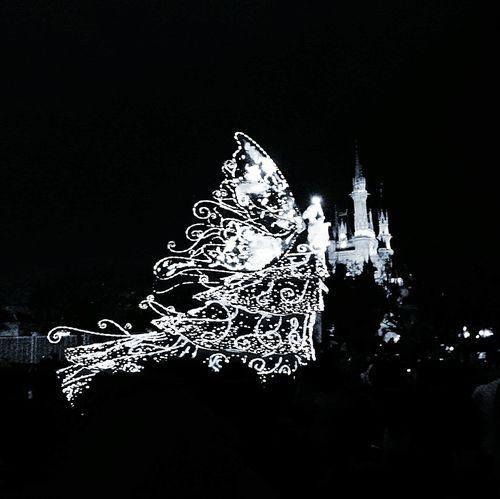 02282016 ディズニーランド パレード Night Photography