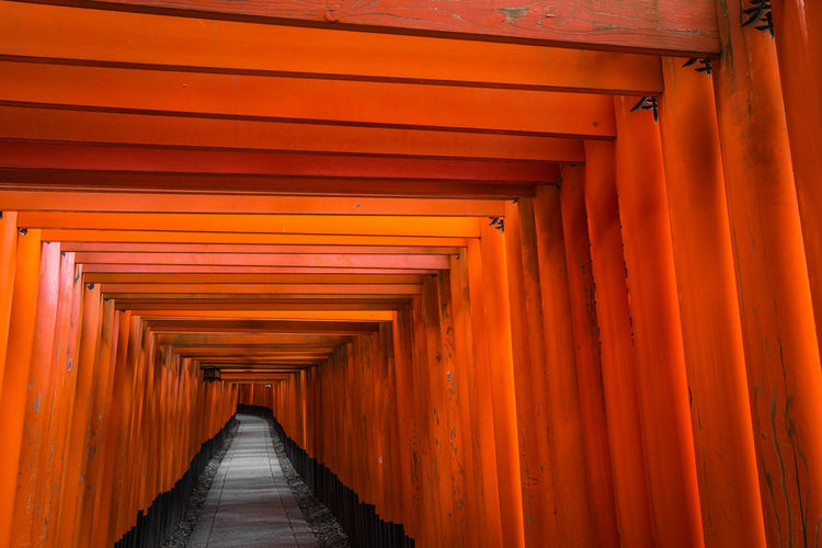 1000 Torii Gates, Fushimi-Inari, Kyoto. ASIA EyeEm Best Shots EyeEm Gallery Japan Japanese  Lines Path Perspective TORII Travel Abstract Architecture Built Structure Day Indoors  No People Orange Color Red The Way Forward Tourism Travel Destinations The Graphic City Visual Creativity