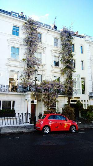 Living in London Wanderlust London City Suburban Notting Hill