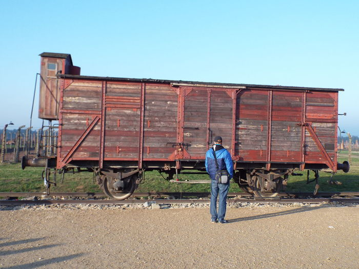 The train carts used to bring in the prisoners to the auschwitz-birkenau concentration camp. The carts could hold upto 120 people at a time. Auschwitz Birkenau Cart Concentration Camp Jew Jews Poland Prisoner The Tourist The Tourist Mission Train World War 2 Ww2