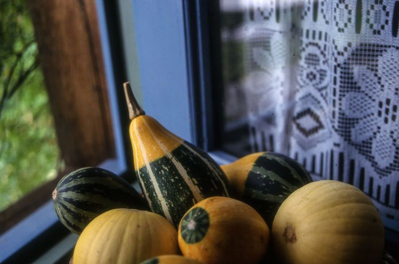 Close-up Of Squash Vegetables At Home