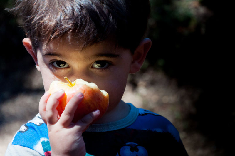 Apple Looking At Camera Boys Child Childhood Close-up Eating Focus On Foreground Food And Drink Freshness Front View Headshot Innocence One Person Portrait Real People