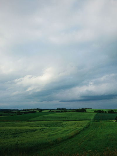 Poland. Field Agriculture Landscape Cloud - Sky Nature Beauty In Nature Outdoors No People Green Color Sky Scenics Storm Cloud EyeEm Best Edits EyeEm Best Shots VSCO