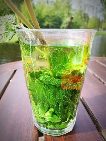 Tea Is Healthy Fresh Minttea Tea Time Tea With A View Park Relaxing Smartphonephotography Lekker Your Amsterdam if you order mint tea in Amsterdam you will always get fresh mint l