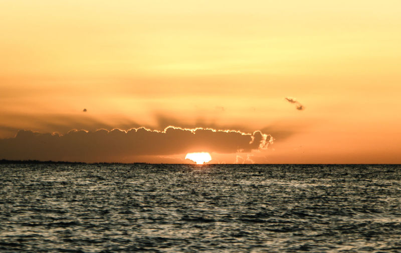 Bests Days of My Life Sunset Mexico Nature Goldhour Golden Hour Travel Destinations Travel Photography Holbox Paradise Paradise Beach Sunlight Happiness