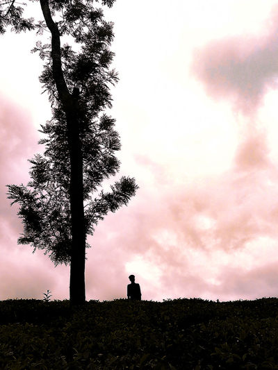 Low angle view of silhouette man sitting on field against sky