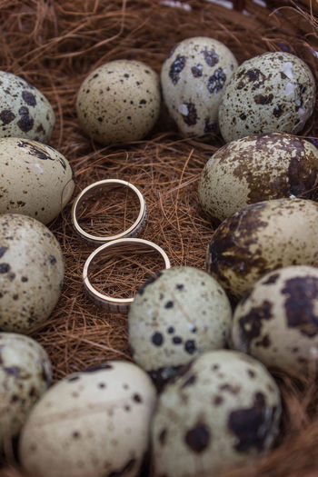 wedding rings Backgrounds Close-up Creativity Full Frame Large Group Of Objects Quail Eggs Repetition Rings Selective Focus Still Life Wedding Wedding Day Wedding Photography Wedding Photos Wedding Ring Lieblingsteil