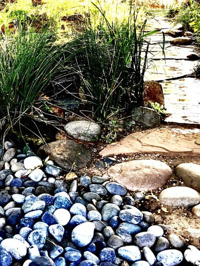 Pebble Nature Rock - Object Day Outdoors No People Beach Water Pebble Beach Beauty In Nature Close-up Path In Nature Pebbles Pathway Gardening Green Color Stone - Object Garden Pebble Beach Gardens Waterdrops