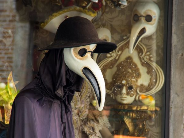 Animal Representation Carnival City Close-up Day Indoors  Italy Mask Mask - Disguise No People Plague Doctor Shop Window Statue Travel Venetian Mask Venice Venice, Italy