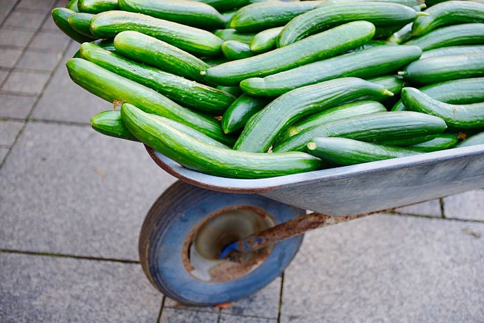 Wheelbarrow Pushcart Cucumis Sativus Cucumber Green Color Vegetable Wellbeing High Angle View Food And Drink Food Freshness Day Raw Food No People For Sale Outdoors Market Container Nature Healthy Eating Close-up Retail  Market Stall